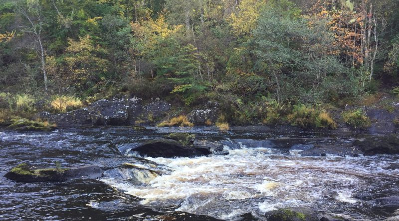 Rogie Falls in the Highlands